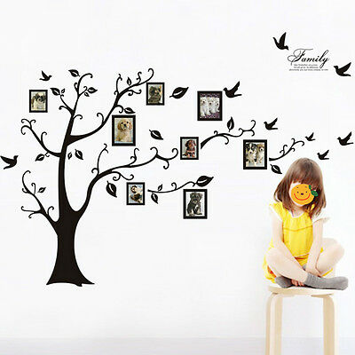 Family Tree Birds Photo Frame Quotes Wall Stickers Art Decals Home Decor X-Large