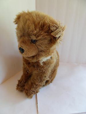 Steiff bear Junior Petsy button/flag large made in Germany 1590