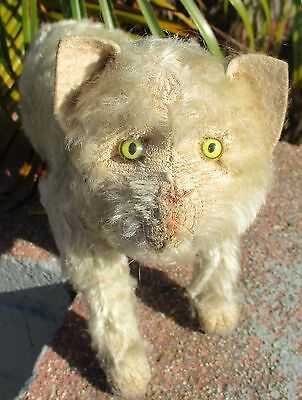 """Antique Steiff CAT super rare circa 1905 large size 11"""" inch long mohair kitty"""