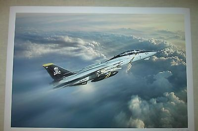 Jolly Rogers F-14 Tomcat Print by Artist Peter Chilelli (New)