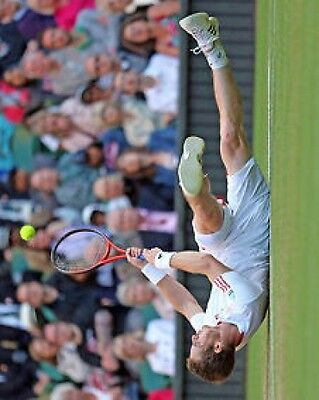 Andy Murray Wimbledon Champion 2013 Tauchen 10x8 Foto