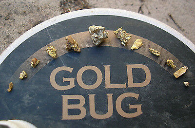 Fisher Gold Bug Pro Metal Detector. WATCH VIDEO Monster Gold Nugget Find