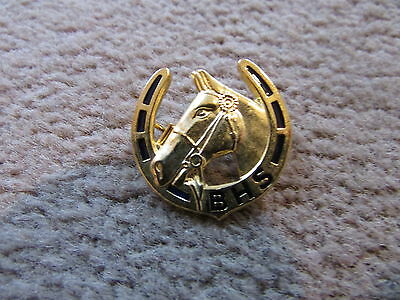 British Horse Society Pin Collectable Gold coloured badge