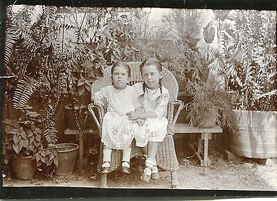 1900s postcard size photograph Two girls in a Lloyd Loom chair surrounded plants