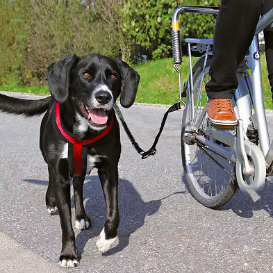 Trixie Biker Set de Luxe Dog Lead Harness Bike Bicycle - for Large Dogs