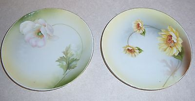 Two Handpainted GERMANY German Flower Plate PLATES - Daisy ~ Apple Blossom