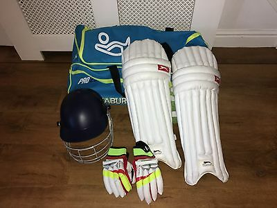 Boys/youth cricket bag, gloves, pads and helmet