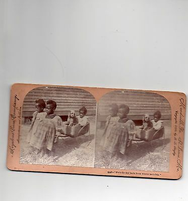 """""""We's dis dot back from where we""""s bin"""" 1899  Stereo View Stereoscopic View"""