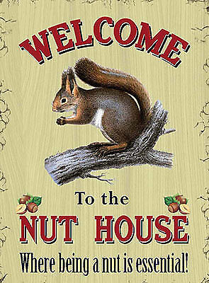 Welcome to the nut house Blechschild Stabil Flach Neu aus GB 15x20cm S5375