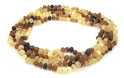 """Amber Wholesale Lot - 5 pcs of Raw Rainbow Baltic Amber Adult Necklaces, 17.7"""""""