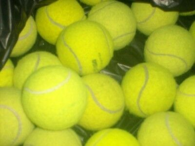 12 tennis ball used in good condition