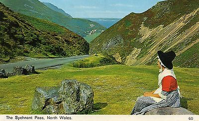 Postcard Wales The Sychnant Pass  North Wales   unposted Bamforth 60