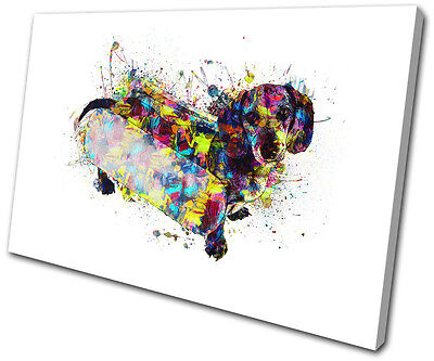 Dachshund Sausage Dog Colourful Animals SINGLE CANVAS WALL ART Picture Print