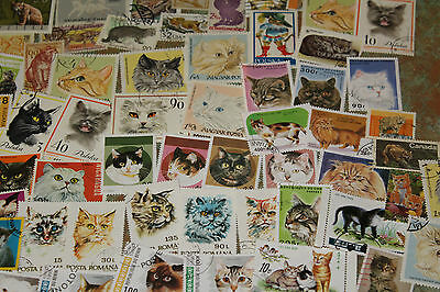 Bulk Lot Cats  Themed Stamps X 50  Good Mix Free Postage In Oz
