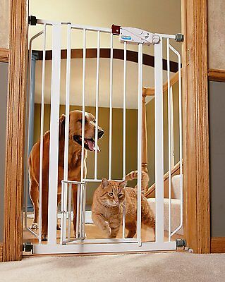 Carlson 36Inch Extra Tall Pet Gate, with Included Extension Kit