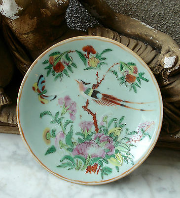 Antique 19thC CHINESE FAMILLE ROSE Celadon PLATE Bird Butterfly 1880 #6 Signed