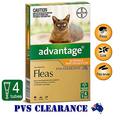 Advantage Orange 4 for Kittens & Small Cats Up To 4 kg -  4 Pack - Kitten Flea