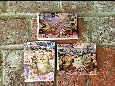 Sweet Kittens & Roses Note Cards Set Of 8 Matching Envelopes 2 Designs Must See!