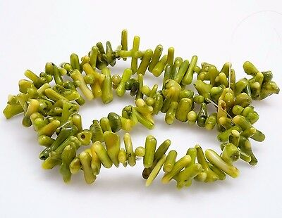 """Set of 3 - Olive Green Coral - Cupolini Shape 16"""" Bead Strand - 5-6x3mm Beads"""