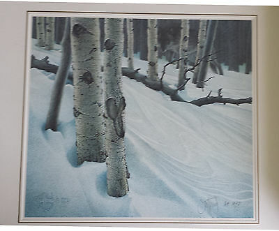 "Scott Kennedy Wolf Print ""Midnight Eyes"" S/N Ltd Ed Artist proof 19/50"