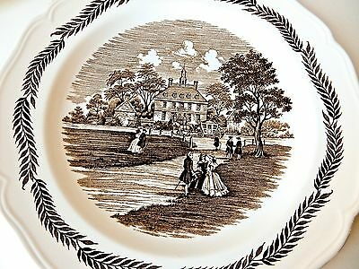 6 Antique Plates Vintage Transferware Dishes J & G Meakin