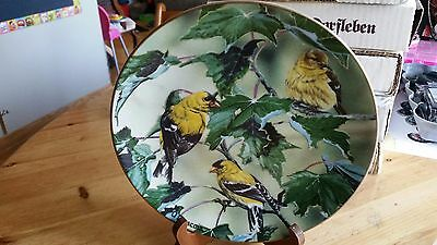 FAVORITE AMERICAN SONGBIRDS Goldfinches of Summer Plate