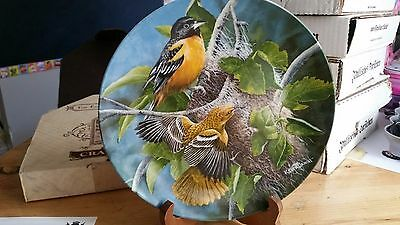 Knowles Collectable THE BALTIMORE ORIOLE by Kevin Daniel