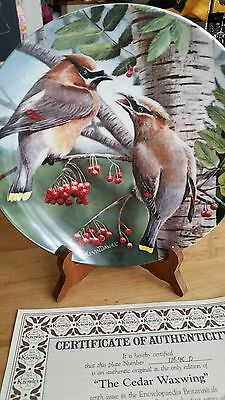 The Cedar Waxwing BIRDS OF YOUR GARDEN COLLECTION by Kevin Daniel Knowles Plate