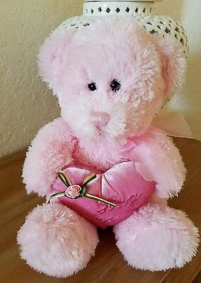 Pink Valentine's Teddy Bear Plush Stuffed Hug Me Heart Pillow