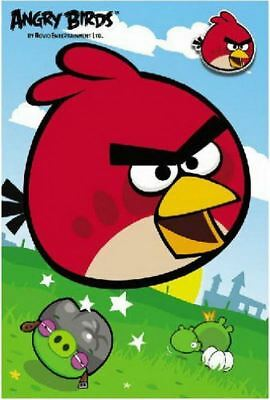 Angry Birds Birthday Cards Kids Birthday Party Supply