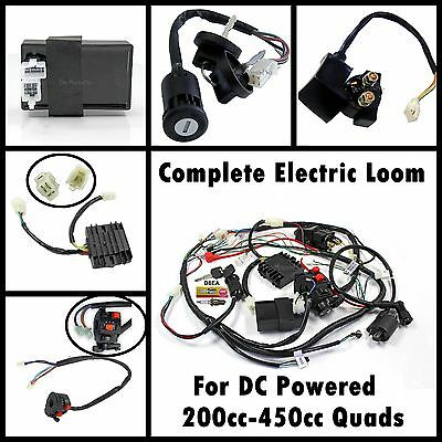 Full Electric Wiring Loom for Atomik Foxico Quadbike w' Water Cooled DC Engine