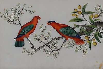 Fine Antique Chinese Rice Pith Paper Painting Two Parrots