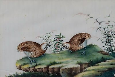 Fine Antique Chinese Rice Pith Paper Painting Two Quail