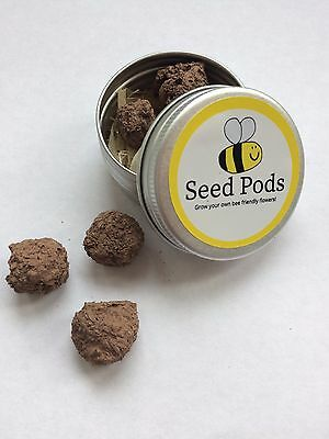 Bee Friendly Seed Bombs for Rural and Urban Gardens