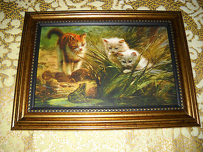 3 CATS PEER AT FROG 4 X 6 gold framed picture Victorian style animal art print
