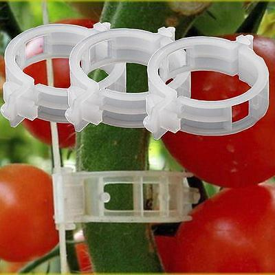 10/100Pcs Tomato clips trellis vegetable binder twine garden plant support 24mm