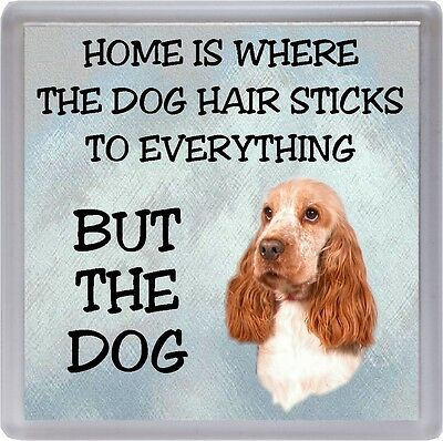 "Cocker Spaniel Dog No 3 Fridge Magnet /""A HOUSE IS NOT A HOME/"" by Starprint"