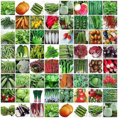 VARIETIES vegetable Seeds Heirloom retail package with name and picture