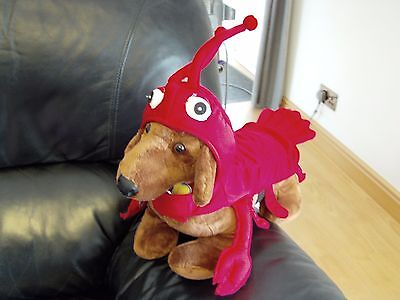 brand new with tag dog fancy dress costume red lobster s m l small medium large