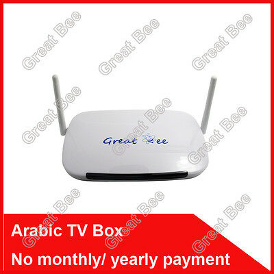Arabic IPTV box,Great Bee arabic channels ,free shipping no monthly fee iptv ara