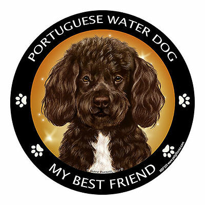 My Portuguese Water Dog Chocolate Is My Best Friend Dog Car Magnet