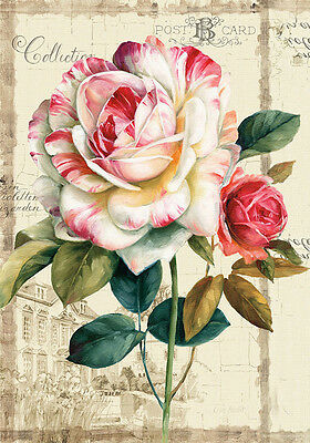 Shabby Chic French Provincial Camellia Flowers Floral Quality Canvas Print