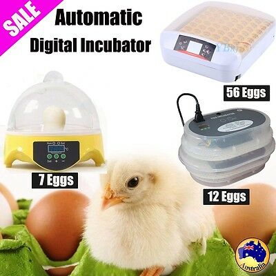 7/12/56 Eggs Incubator Fully Auto Digital Turning Chicken Duck Bird Eggs Poultry
