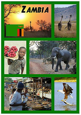 Zambia, South Africa - Souvenir Novelty Fridge Magnet - Flags / Sights / Gifts