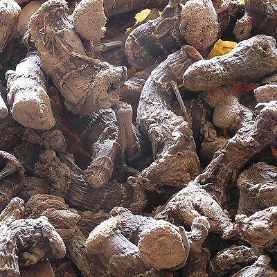GALANGAL ROOT Alpinia officinarum DRIED Herb, Whole Herbal Tea 100g