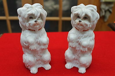 """Pair Of Vintage German Bisque White Sitting Shaggy Dogs Excellent 5 3/4"""" Tall"""