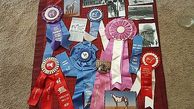Vintage Lot 10 Horse Show Ribbons Equestrian Awards World Wide, State, 5 Pic's