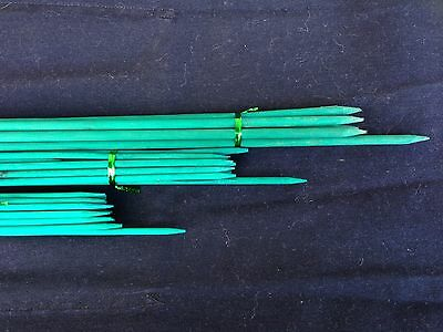 Green Bamboo Flower Stakes 45cm Ideal for flowers or vegies Orchid
