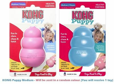 Kong Classic Puppy Medium Colors Vary (Free Shipping in USA)