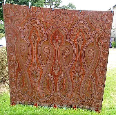 "Large Antique Victorian Paisley Shawl   138"" By 64.5"""